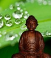 Yoga si masajul de cuplu – o experienta a relaxarii
