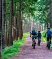 Cycling through nature - the ideal gift for your body